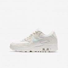 290IDTPV Nike Air Max 90 Lifestyle Shoes For Girls Sail/Igloo