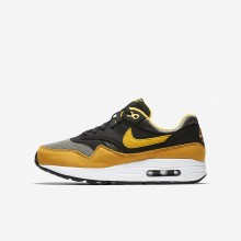 363MCFDR Nike Air Max 1 Lifestyle Shoes For Boys Dark Stucco/Black/Mineral Yellow/Vivid Sulfur