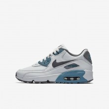 527QWPOS Nike Air Max 90 Lifestyle Shoes For Boys Pure Platinum/Noise Aqua/Dark Grey/Cool Grey