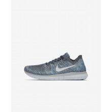 598ASVGI Nike Free RN Running Shoes For Boys Blue Fox/Wolf Grey/White/Pure Platinum