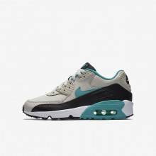 669RMACS Nike Air Max 90 Lifestyle Shoes For Boys Light Bone/Black/White/Sport Turquoise